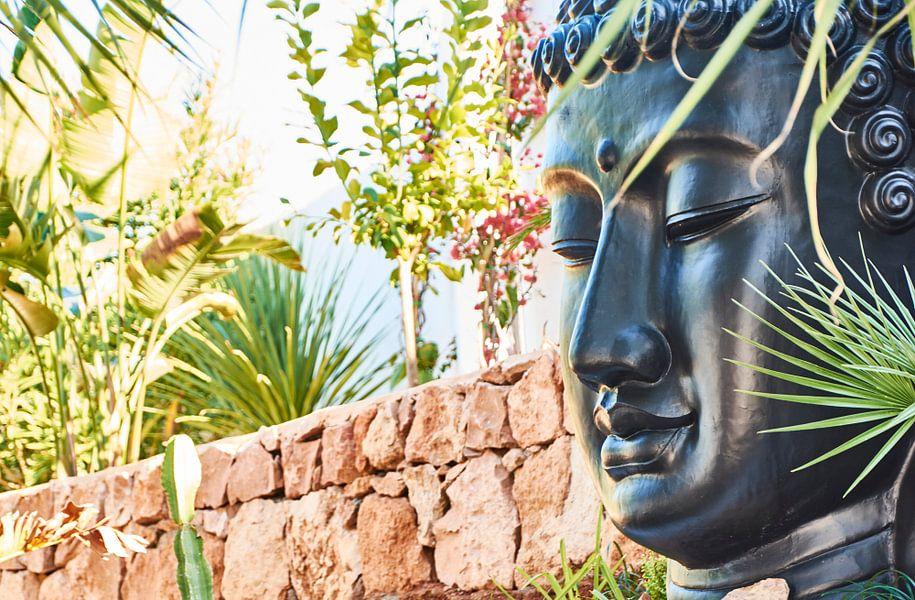 boeddha in de tuin van Peter v Mierlo