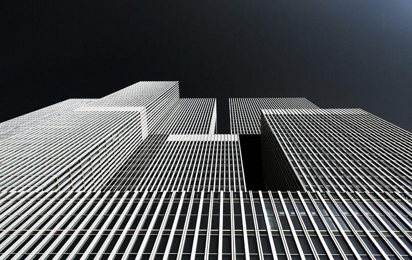 De Rotterdam van Ronne Vinkx