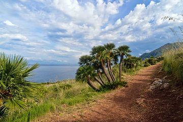 Magisches Naturreservat in Sizilien von Silva Wischeropp