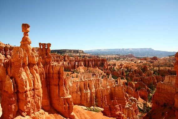 Uitzicht Bryce Canyon