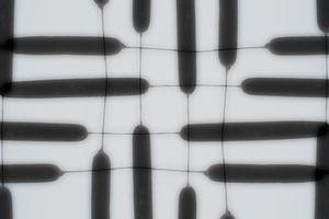 Stinksigaar 2 - Something Zen