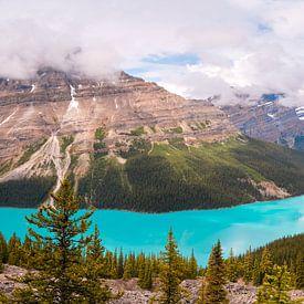 Peyto Lake Canada sur Kees van Dongen