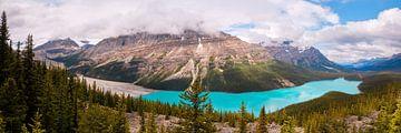Peyto Lake Canada van Kees van Dongen