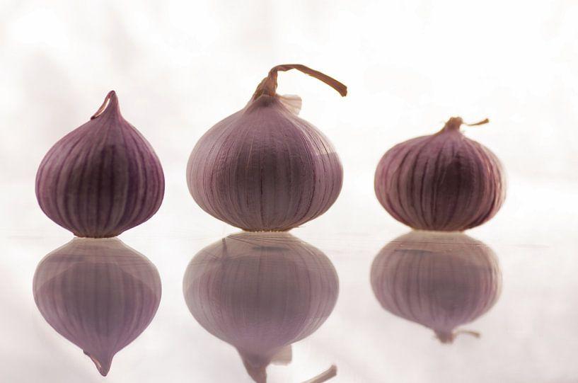 Drei Knoblauchzehen als Küchenstillleben von Tanja Riedel