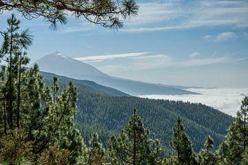 El Teide van Edwin Walstra