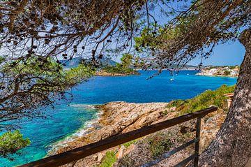 Sant Elm met de eilanden Es Pantaleu en Sa Dragonera, Mallorca Spanje van Alex Winter