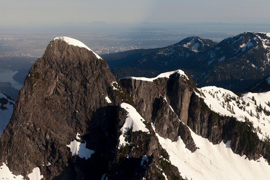 Bergen van bovenaf van Irene Hoekstra