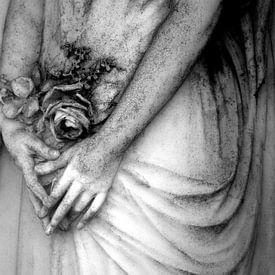 The memory is infinite von Anne Seltmann