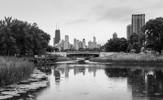 Chicago vanuit het park