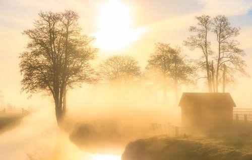 Een prachtige mist hangt over het landschap bij Landgoed Nienoord in Leek