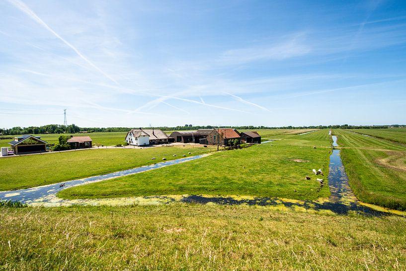 Hollands Landschap van Brian Morgan