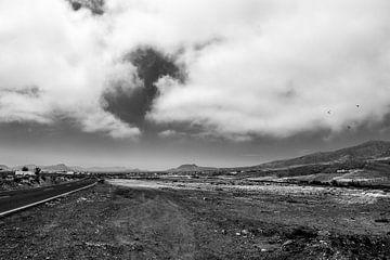 Desertview van Arjan Penning
