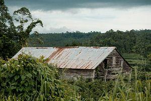 Cubaanse Tabakschuur