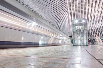Ankommender Zug im hochmodernen Bahnhof von Lüttich Guillemins von Daan Duvillier