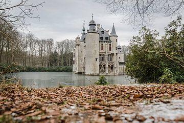 Kasteel in België  van Andras Veres