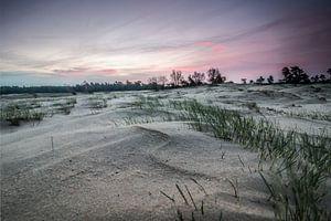 Zonsopkomst bij een zandverstuiving van
