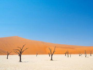 Zandduinen van de Sossusvlei woestijn in Namibië van Teun Janssen