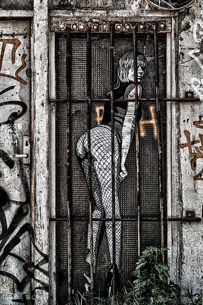 Raamwerk van marjolein Parijs