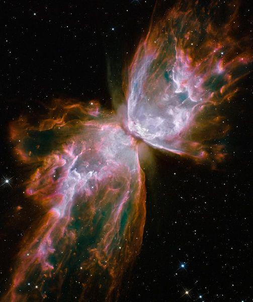 Hubble Spies a Butterfly van Digital Universe