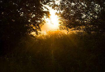 Blick bei Sonnenaufgang von Marcel Kerdijk