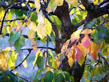 Gesichter des Herbstes van Heidrun Carola Herrmann