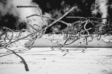 Stahlbeton von Sebastian Schimmel
