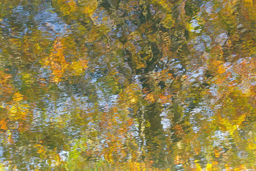 Kleuren op water 1 van Karla Leeftink