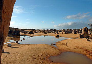 Nambung National Park (Western Australia) van Exiit Photography