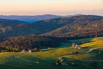 Landschap met boerderijen in het Zwarte Woud van Werner Dieterich