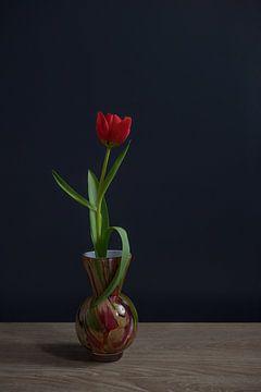 Stilleben mit einer roten Tulpe in einer Vase von John van de Gazelle