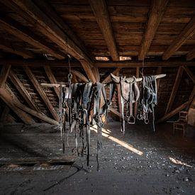 Paardentuig, zadel, halster op zolder van Inge van den Brande
