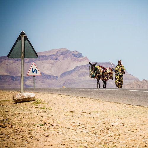 Woman with donkey van