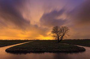 Kunstlicht in de polder van
