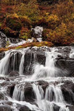 Herfstkleuren bij Hraunfossar waterval van