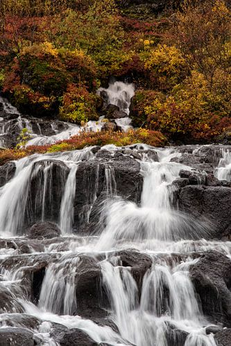 Herfstkleuren bij Hraunfossar waterval