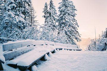 Zitbanken in Sneeuw van Patrycja Polechonska