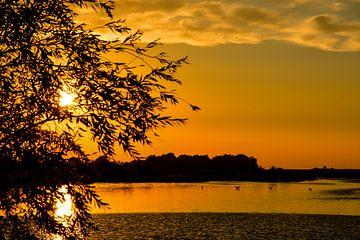 Dutch Sunset von Jaco Verheul