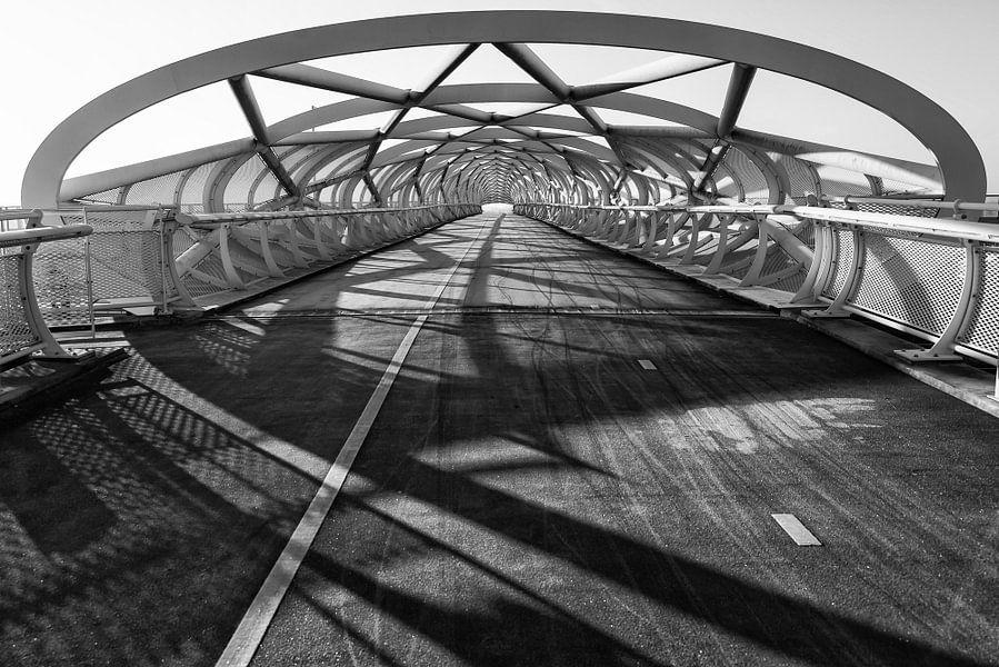 "Fietsbrug ""de Groene Verbinding"" van Renate Oskam"