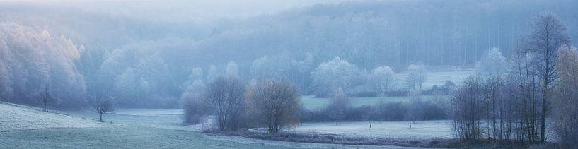 Panorama - Landschap in koude november van Tobias Luxberg