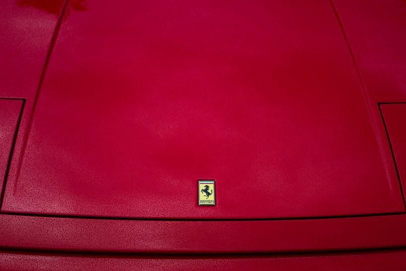 Ferrari logo van Thijs Schouten