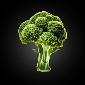 Food-Broccoli op zwarte achtergrond