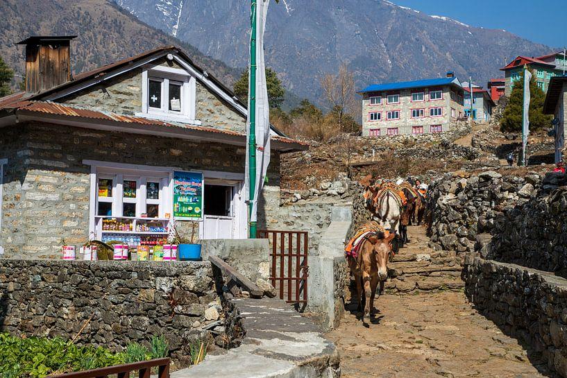 Theehuis onderweg naar het Basecamp Mount Everest van Ton Tolboom