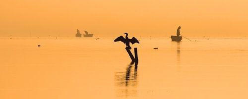 Oranje gloed van Antwan Janssen