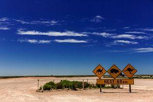 Panneaux de signalisation au début de la route du Nullarbor, une route qui traverse le vide du sud d sur Coos Photography