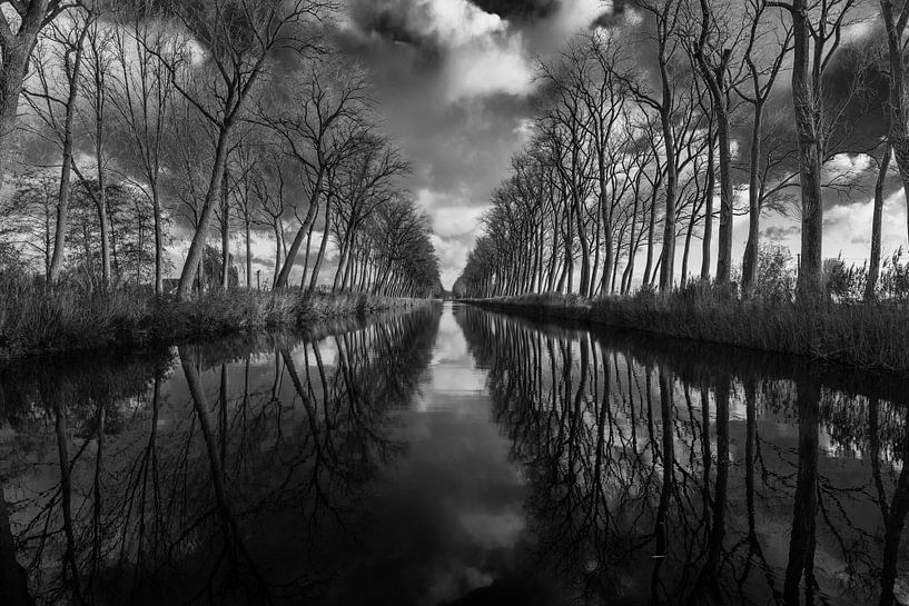 Damme reflecties van Werner Lerooy