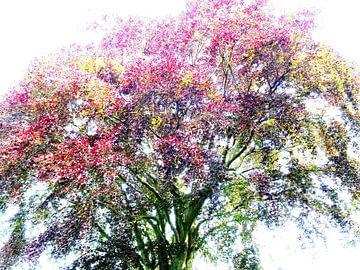 Tree Magic 131 van MoArt (Maurice Heuts)