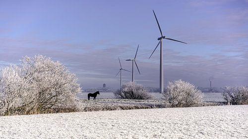 Stilstaande windturbines van Maarten Drupsteen