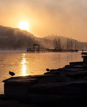Zonsopgang aan het meer met mist en een steiger van Thomas Procek