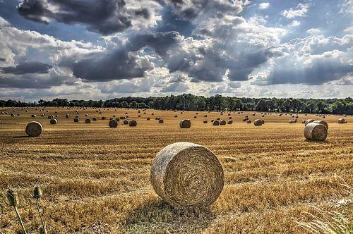 Strorollen op een veld in Frankrijjk