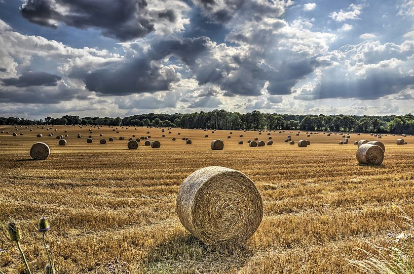 Strorollen op een veld in Frankrijk van Frans Blok